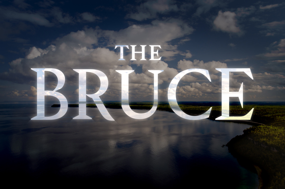 the bruce