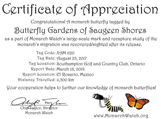 BGOSS monarch tag recovery 2018