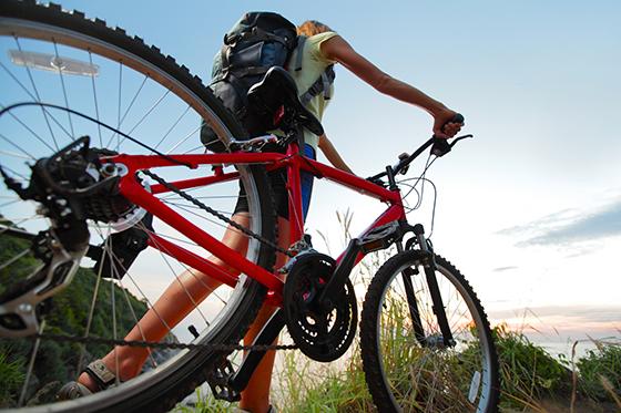 cycle 560